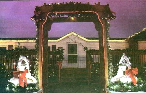 del cook red wing computerized xmas archway