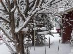 snow 20150323 730am crop1